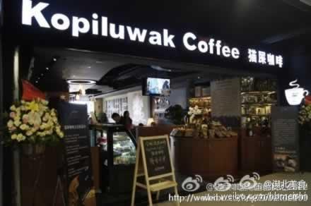 咖啡 江城/传说中最贵的猫屎咖啡来袭 咖啡控们hold不住