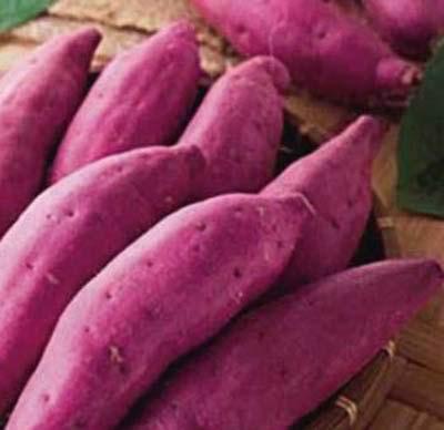 秋冬养生:红薯花生栗子 8食物让你不生病