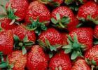 经常吃水果,但是不能犯的七个错误