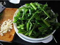 蒜蓉空心菜的做法图片步骤2