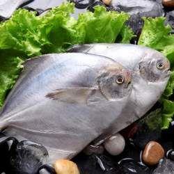 鲳鱼的功效与作用