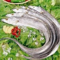 带鱼的功效与作用