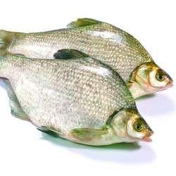 鳊鱼的功效与作用
