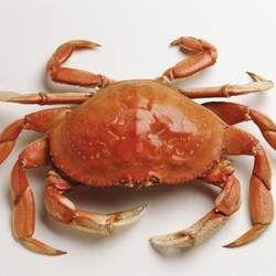 螃蟹的功效与作用