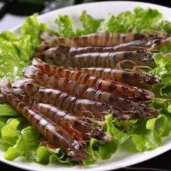 基围虾的功效与作用