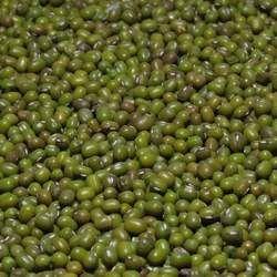 绿豆的功效与作用
