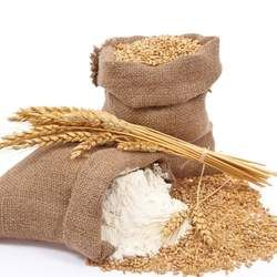小麦面粉的功效与作用