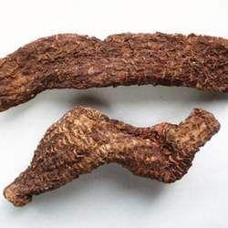 肉苁蓉的功效与作用