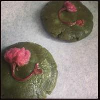 抹茶樱花饼的做法第5步图片步骤 www.027eat.com
