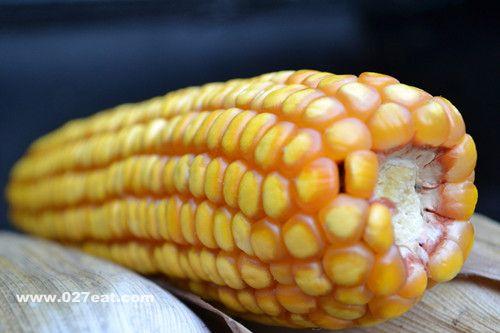 玉米的营养价值有哪些
