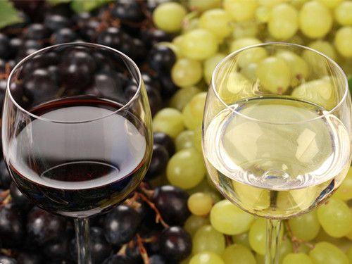 葡萄酒品鉴 如何巧喝佳酿 www.027eat.com