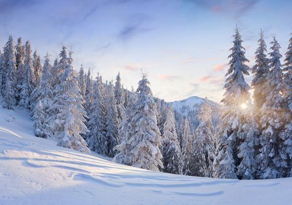 冬季养生需养肾多吃黑色食品 www.027eat.com