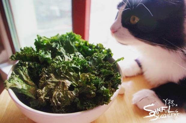 羽衣甘蓝脆片的做法图解,如何做,Kale chips羽衣甘蓝脆片怎么做好吃详细步骤的做法